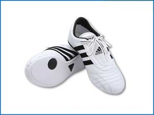 Lightfoot Martial Arts Shoe White